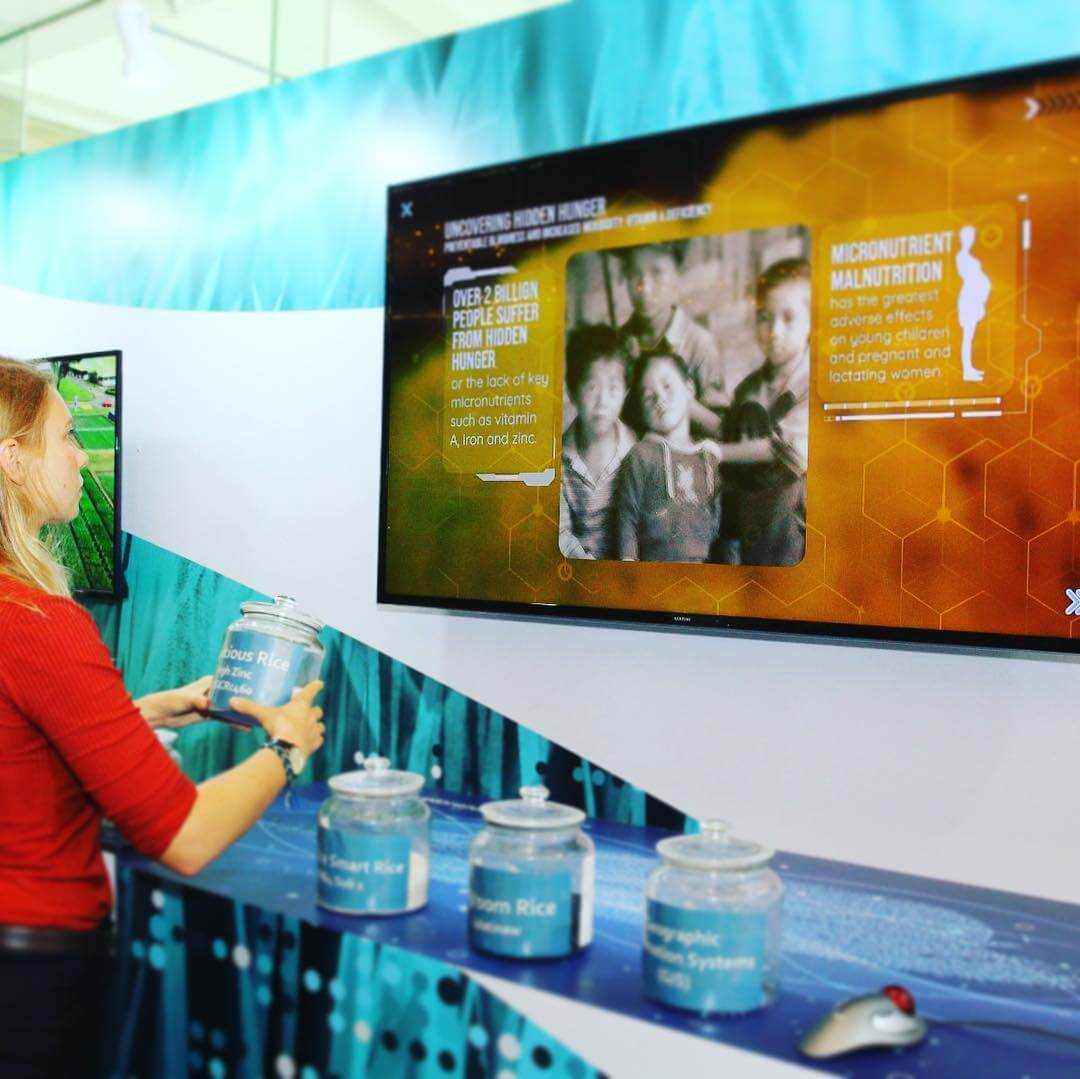 A woman interacts with the IRRI Smart RFID Table Display